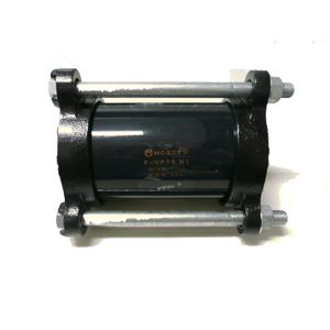 MKNP-F0085g